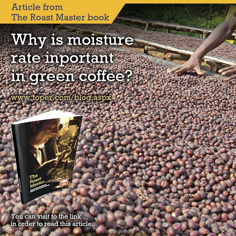 green coffee bean moisture rate roasting quality