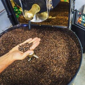tkmsx 30 kahve kavurma makinesi